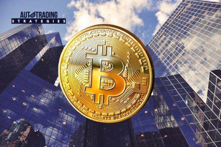 Companies Embracing Bitcoin