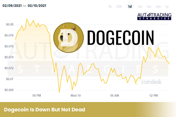 Dogecoin Is Down