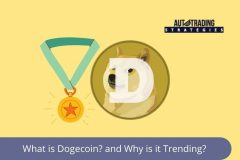 Dogecoin is Everywhere on Dogeday<