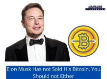 Elon Musk Has not Sold His Bitcoin, You Should not Either