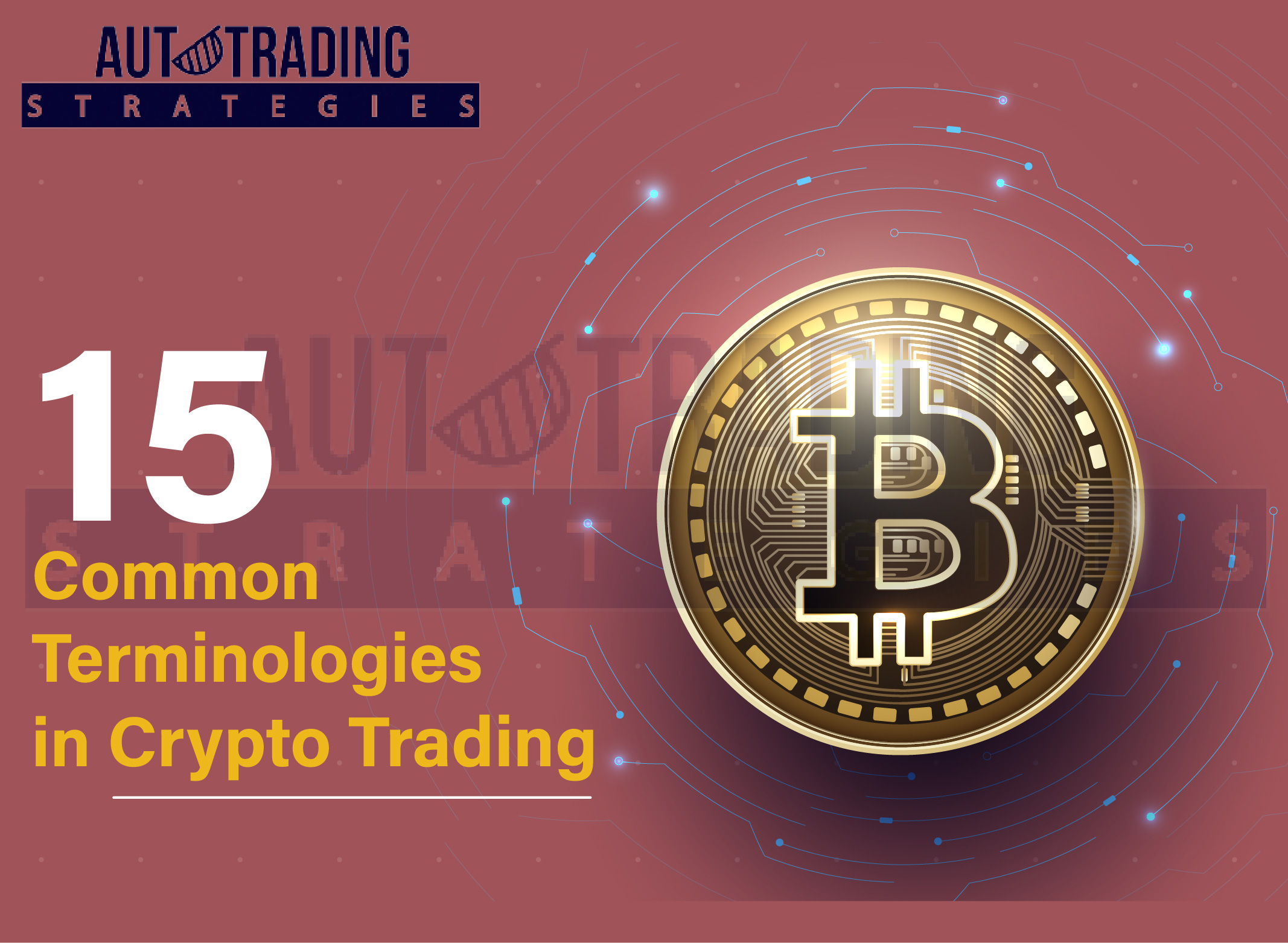 Common Terms in Crypto Trading