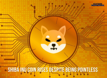 SHIBA INU Coin Rises Despite Being Pointless<